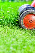 stock photo of grass-cutter  - the mower mows the grass on the lawn - JPG