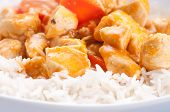 pic of paneer  - indian butter chicken with carrots over white rice - JPG