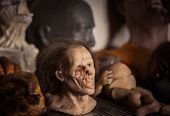 foto of prosthetics  - Masks and dummies on a shelf in prosthetic special fx workshop - JPG