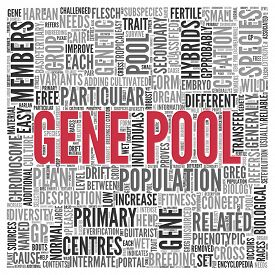 image of genes  - Close up GENE POOL Text at the Center of Word Tag Cloud on White Background - JPG