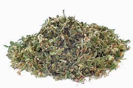 foto of seed bearing  - Hemp seeds and dried hemp leaves in a white background - JPG