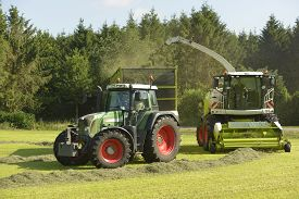 picture of dry grass  - Agriculture forage harvester and transport grass with green tractor and grass trailer - JPG