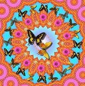 stock photo of woodstock  - digitally created peace mandala in the tradition of flower power - JPG