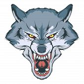 Wolf Head Vector Drawing, Wolf Face Drawing Sketch, Wolf Head Colored Drawing, Vector Graphics To De poster