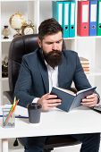 Reading Authority Business Book. Man Bearded Hipster Boss Sit Armchair Office Interior Read Book. Bo poster
