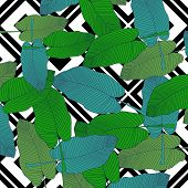 Trendy Hand Drawn Pattern With Colorful Banana Leaf Drawn Outline On Geometric Black And White Backg poster