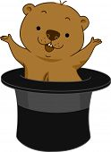 picture of groundhog day  - Illustration of a Groundhog Popping Out of Hat - JPG