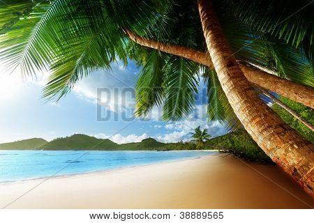 Постер, плакат: Закат на пляже Анс Такамака Остров Махе Сейшельские острова, холст на подрамнике