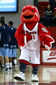 NEW YORK-NOV 3: St. John's Red Storm mascot performs at the game against Sonoma State Seawolves at C