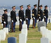 Honor Guard In Cemetery