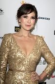 LOS ANGELES - JAN 11:  Lindsay Price at the  2014 G'Day USA Los Angeles Black Tie Gala at JW Marriot