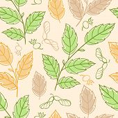 Seamless Pattern With Elm Branches