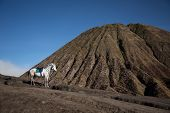 stock photo of bromo  - Indonesian volcano - JPG