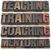 pic of mentoring  - teaching - JPG