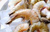 stock photo of tiger prawn  - cold fresh raw tiger shrimps with ice - JPG