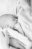 picture of breastfeeding  - mother breastfeeding the newborm baby  - JPG