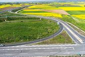 picture of rape-seed  - Aerial view of road passing through a rural landscape with blooming rape in northern Greece  - JPG