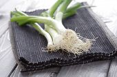 stock photo of leek  - Leeks on cloth  - JPG