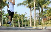 stock photo of jogger  - fitness jogger legs running at tropical park - JPG