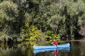 pic of canoe boat man  - View of the young man rowing in a canoe - JPG
