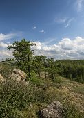 picture of ural mountains  - The Republic of Bashkortostan - JPG