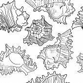 picture of beach shell art  - Seamless marine pattern with sea shells - JPG