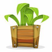 pic of bucket  - Illustration of a cartoon simple funny green plant growing inside wood bucket - JPG