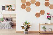 Diy Hexagon, Honeycomb Cork Wall poster