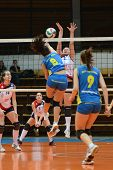 KAPOSVAR, HUNGARY - DECEMBER 12: Barbara Balajcza (8) in action at the Hungarian NB I. League woman