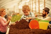 Little Farmer. Little Farmer Work With Soil. Little Farmer In Greenhouse. Little Farmer Child Planti poster