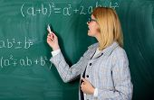 Focused On Exam. Teacher On School Lesson At Blackboard. Woman In Classroom. School. Home Schooling. poster