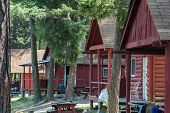 Row Of Log Cabins at a Resort  in a Forest