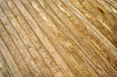 Wooden Boardwalk Background