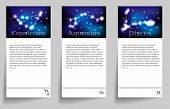 picture of pisces  - Set or collection horoscope or zodiac or constellation capricorn aquarius pisces - JPG