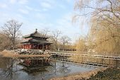 picture of winter palace  - Old Summer Palace of Beijing, with pavilion and reflection on the lake in winter