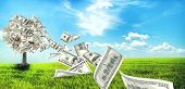 pic of prosperity sign  - Money tree growing in the middle of green meadow - JPG