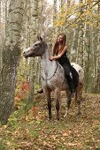 stock photo of appaloosa  - Young girl with appaloosa horse in autumn forest - JPG
