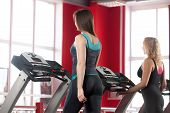 picture of cardio exercise  - Sporty girls exercising on cardio trainer treadmill in gym  - JPG