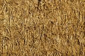 stock photo of animal husbandry  - The closeup of a straw bale with compressed straw - JPG