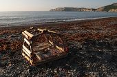 picture of lobster trap  - Damaged lobster trap washed up on the shore with Gaspe pennisula in the background  - JPG