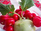 stock photo of turnips  - fresh mix of radishes and french turnip