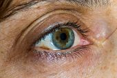 pic of close-up middle-aged woman  - Close up of a middle age woman green eye and skin aging - JPG