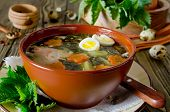 foto of nettle  - Nettle soup with eggs and carrot in the bowl on the wooden table - JPG