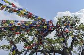 picture of prayer  - closed up the prayer flag in Nepal