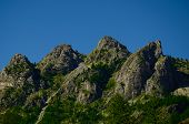 pic of italian alps  - landscape of italian alps four peaks sorrounded by pines and firs - JPG