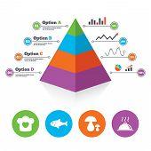image of food pyramid  - Pyramid chart template - JPG