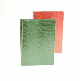 stock photo of green snake  - green and red books in leather cover on a white background Snake Cover - JPG