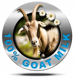 stock photo of goat horns  - Metallic round icon or symbol with a head of horned goat three daisy flowers and text 100  - JPG