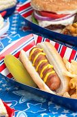 picture of hot dog  - Hot dogs corn and burgers on 4th of July picnic in patriotic theme - JPG