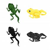 Isolated Object Of Wildlife And Bog Symbol. Set Of Wildlife And Reptile Stock Vector Illustration. poster